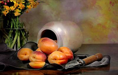 Photograph - Apricot Pot by Diana Angstadt