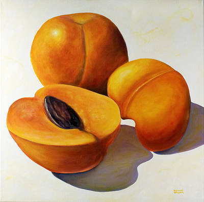 Painting - Apricots by Shannon Grissom