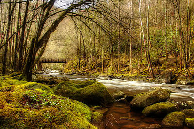 River Scenes Photograph - April Along The Stream by Mike Eingle
