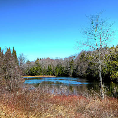 Photograph - April At The Dam by David Patterson