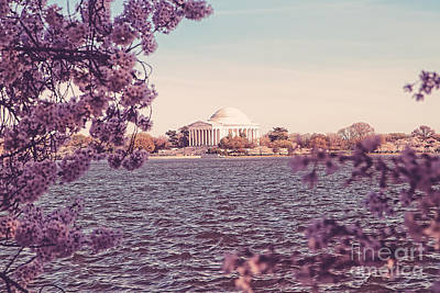 Us Capital Photograph - April In Dc by Emily Kay