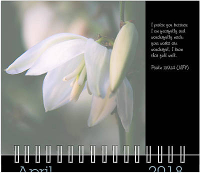 Photograph - April Inspirational Preview by Joni Eskridge
