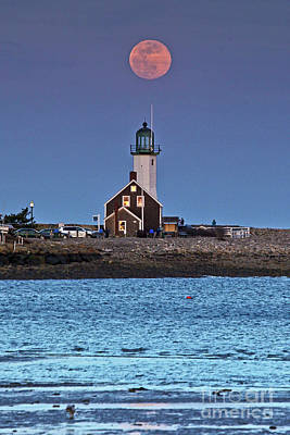 Photograph - April Moon Rise  by Butch Lombardi