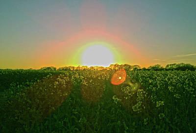 Photograph - April Sunrise by Anne Kotan