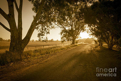 Photograph - Apsley Sunrise by Ray Warren