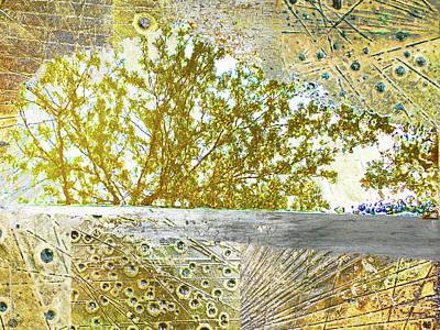Mixed Media - Aqua Metallic Series Gilded by Tony Rubino
