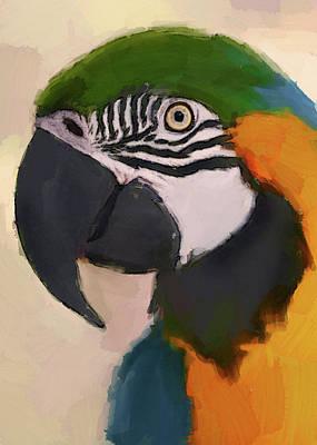 Digital Art - Aqua Parrot by Yury Malkov