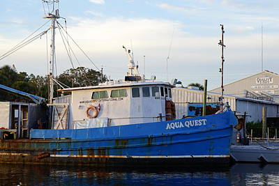 Photograph - Aqua Quest by Laurie Perry