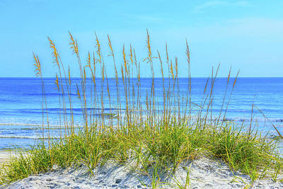 Photograph - Aqua Watered Sea Oats by Paula Porterfield-Izzo