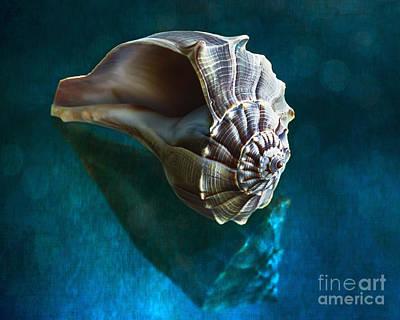 Aquatic Dreams Iv Art Print by George Oze