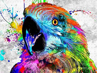 Macaw Mixed Media - Ara Parrot Grunge by Daniel Janda
