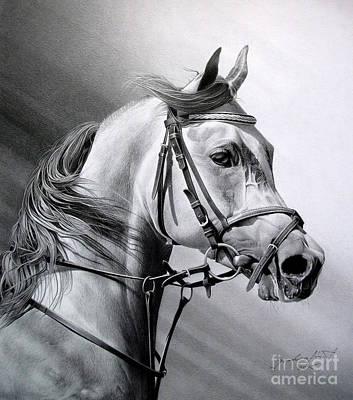 Portraits Drawing - Arabian Beauty by Miro Gradinscak