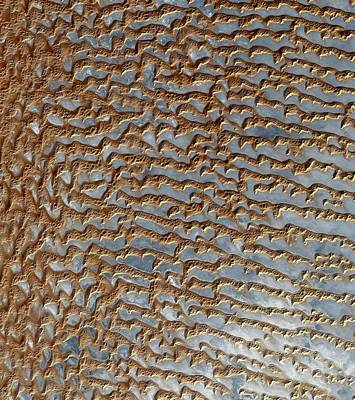 Photograph - Arabian Empty Quarter Sand Dunes Imaged By Terra by Artistic Panda
