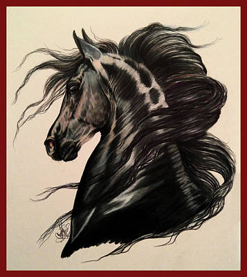 Drawing - Arabian Grey On A Stormy Night by Cheryl Poland