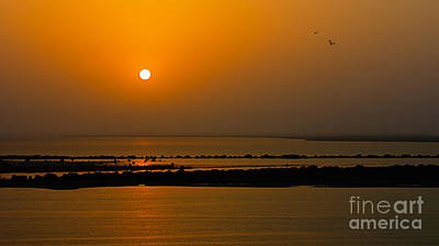 Photograph - Arabian Gulf Sunset by Peter Kennett