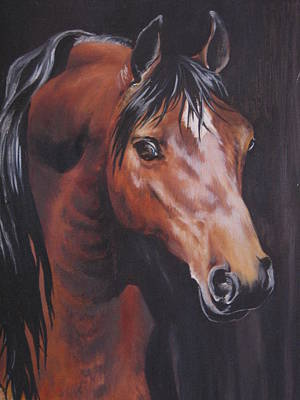 Painting - Arabian Horse 1 by Barbara Prestridge