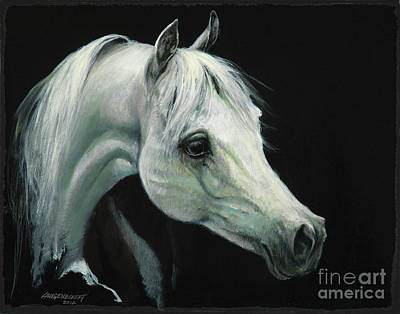 Horse Head Painting - Arabian Horse Head by Don Langeneckert