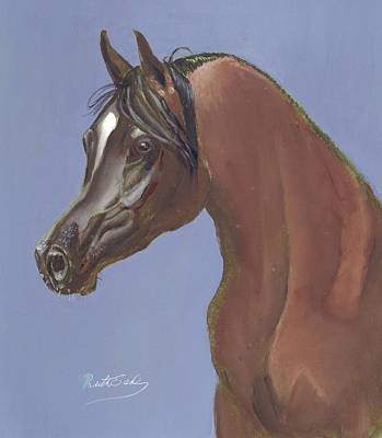 Painting - Arabian Horse Portrait by Ruth Seal