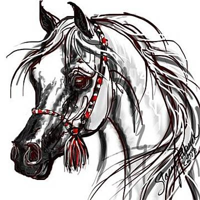 Digital Art - Arabian Horse by Stacey Mayer