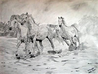 Handcrafted Drawing - Arabian Horses by Melita Safran