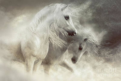 Digital Art - Arabian Horses Sandstorm by Shanina Conway
