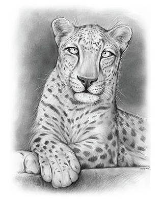 Leopard Wall Art - Drawing - Arabian Leopard by Greg Joens