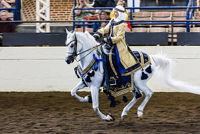 Photograph - Arabian Show Horse 7 by Ben Graham