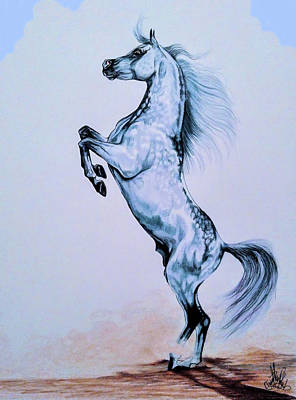 Drawing - Arabian Spirit Of The South by Cheryl Poland
