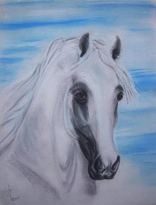 Framed Digital Art Mixed Media - Arabian Stallion Ghaleon by ELA-EquusArt