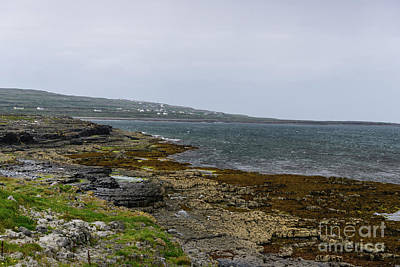 Photograph - Aran Island Coastline by Elvis Vaughn