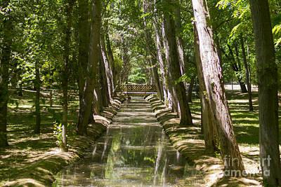 Photograph - Aranjuez Park Canals by Stefano Piccini