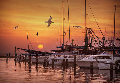 Photograph - Aransas Pass Harbor At Sunrise by Randall Nyhof