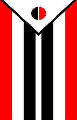 Arapaho Mixed Media - Arapaho Nation Flag by Otis Porritt