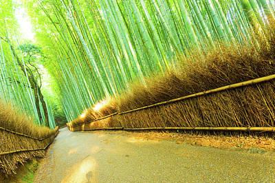 Arashiyama Bamboo Forest Road Grass Fence Tilted Art Print