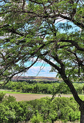 Photograph - Arbor Vista by Sylvia Thornton