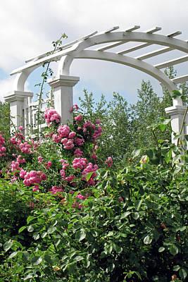 Photograph - Arbor With Roses by Ann Bridges