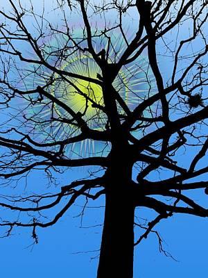 Digital Art - Arboreal Sun by Tim Allen