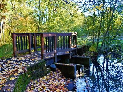 Photograph - Arboretum Bridge Late Fall by VLee Watson