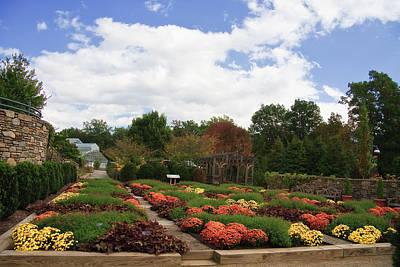 Photograph - Arboretum In North Carolina by Jill Lang