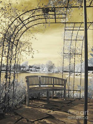 Photograph - Arboretum Trellis Bench by Crystal Nederman