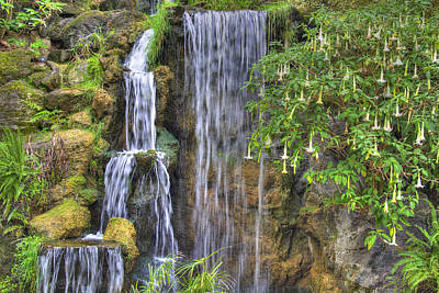 Photograph - Arboretum Waterfall 2 by Richard J Cassato