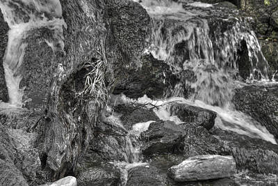 Photograph - Arboretum Waterfall Bw by Richard J Cassato