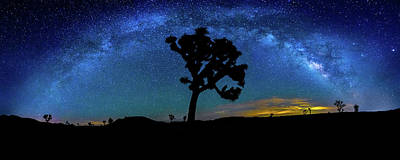 The Milky Way Photograph - Arc De Joshua Tree I by Peter Tellone