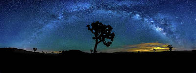 The Milky Way Photograph - Arc De Joshua Tree II by Peter Tellone