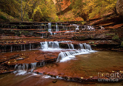 Photograph - Archangel Cascades In Zion by Jamie Pham