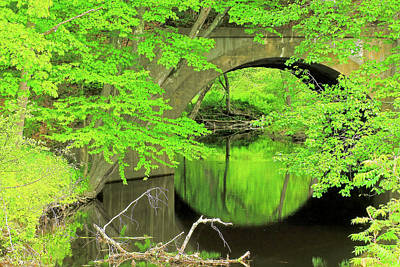 Photograph - Arched Bridge by Brian Pflanz