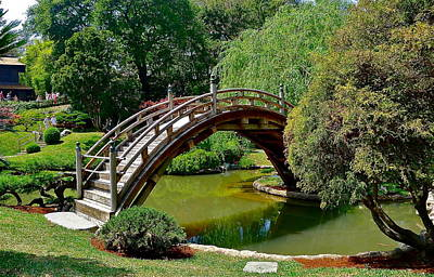 Photograph - Arched Bridge by Denise Mazzocco