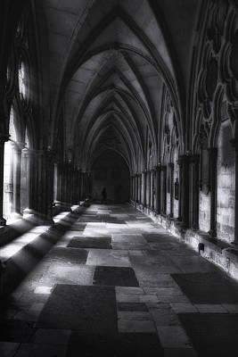 Reptiles - Arched Corridor by Andrew Soundarajan
