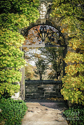 Photograph - Arched Path by Colleen Kammerer