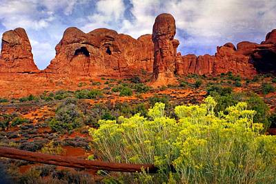 Photograph - Arches Landsape 2 by Marty Koch